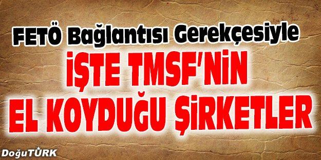İŞTE TMSF'NİN EL KOYDUĞU ŞİRKETLER
