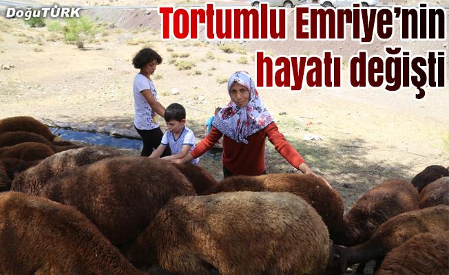 """Tortumlu Emriye'nin hayatı """"Genç Çiftçi Projesi""""yle değişti"""