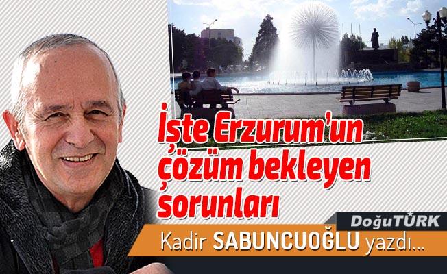İşte Erzurum'un çözüm bekleyen sorunları