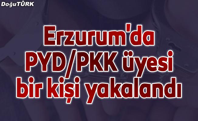 Erzurum'da PYD/PKK üyesi bir kişi yakalandı