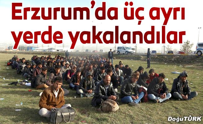 Erzurum'da 194 kaçak göçmen yakalandı
