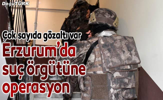 Erzurum'da suç örgütü operasyonu