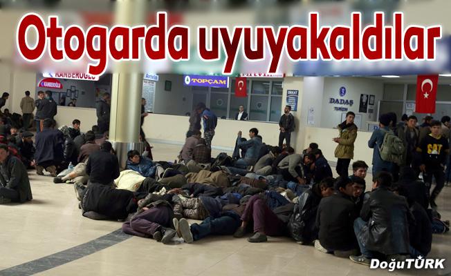 Erzurum'da yakalanan kaçak göçmenler otogarda uyuyakaldı