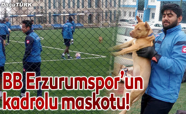 BB Erzurumspor'un kadrolu maskotu!