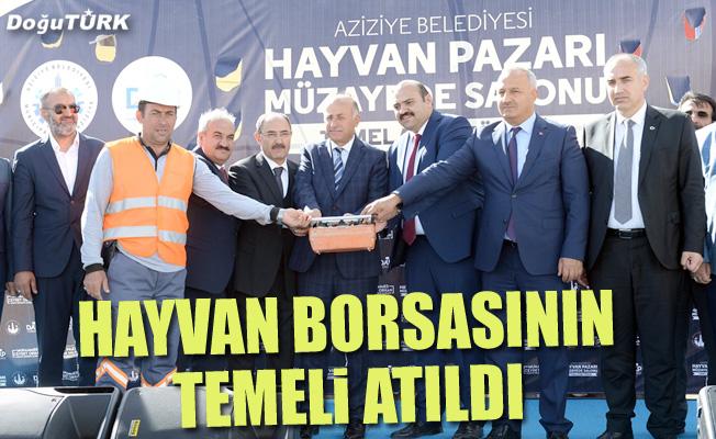 Erzurum, canlı hayvan fiyatının belirlendiği tek yer olacak