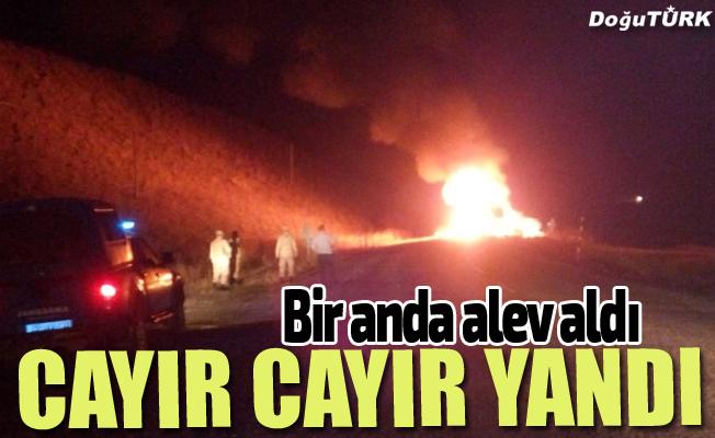 Erzurum'da ot yüklü kamyon yandı