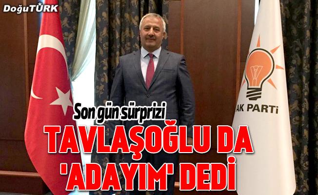 Başkanvekili Tavlaşoğlu aday adayı oldu