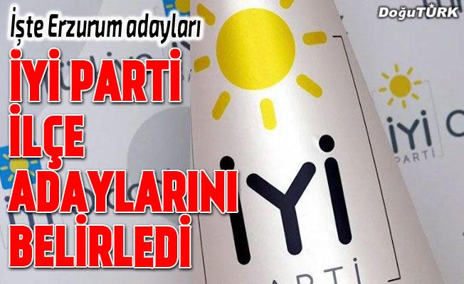 İYİ Parti Erzurum ilçe adaylarını belirledi