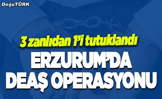 Erzurum'da DEAŞ operasyonu