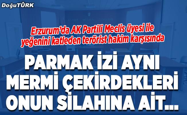 AK Parti'li Küçük ile yeğeninin katiline ağırlaştırılmış müebbet