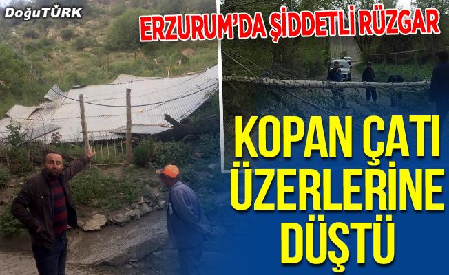 Erzurum'da şiddetli rüzgar; Çatılar uçtu, ağaçlar devrildi
