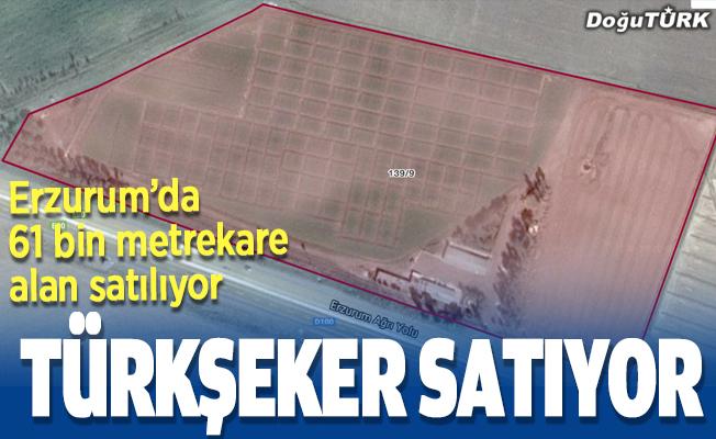 Türkşeker Erzurum'da satışa çıktı