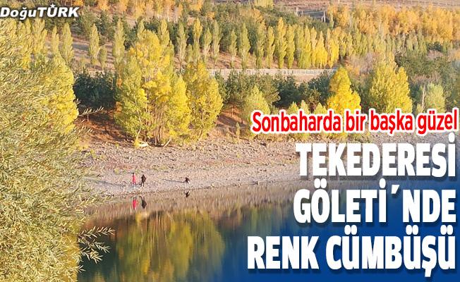 Erzurum'un zirvesindeki Tekederesi Göleti sonbaharda bir başka güzel