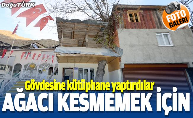 Erzurum'da çatısında asırlık ceviz ağacı olan kütüphane ilgi görüyor