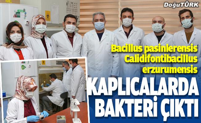 Erzurum'un kaplıcalarından bakteri çıktı