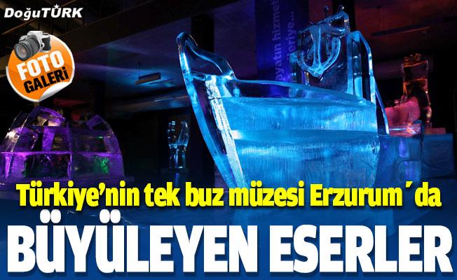 """""""Türkiye'nin tek buz müzesi"""" ziyaretçilerini adeta kutuplarda gezintiye çıkarıyor"""