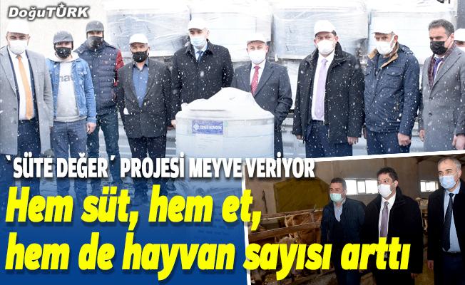 """Erzurum'da yürütülen """"Süte Değer"""" projesi meyve vermeye başladı"""