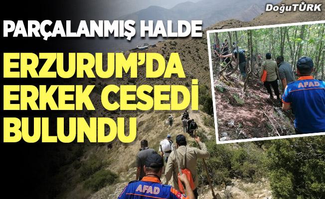 Erzurum'da dağlık arazide erkek cesedi bulundu