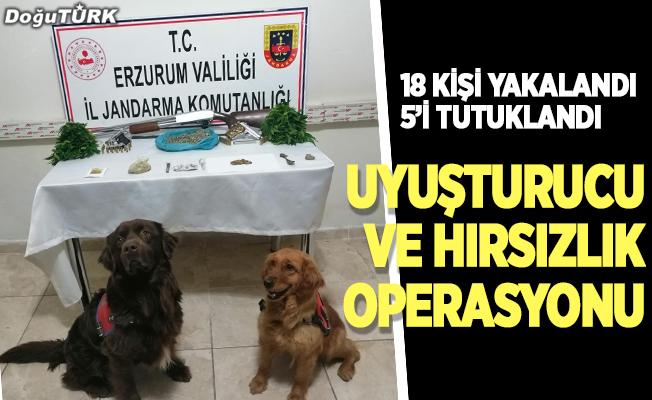 Erzurum'da uyuşturucu ve hırsızlık operasyonu