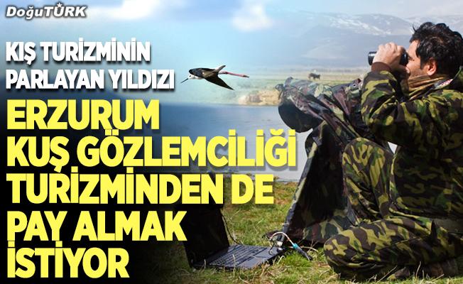 Kış turizminin parlayan yıldızı Erzurum kuş gözlemciliği turizminden de pay almak istiyor
