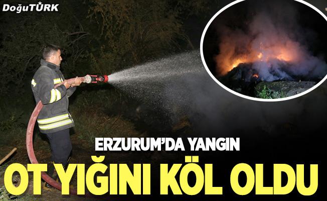 Erzurum'da yangın; Ot yığını kül oldu