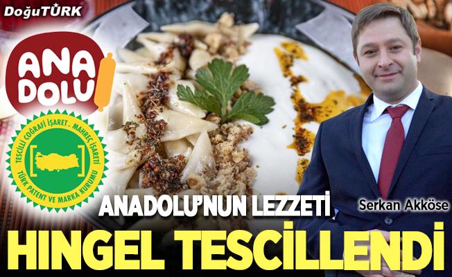 Anadolu'nun HINGEL'i artık tescilli