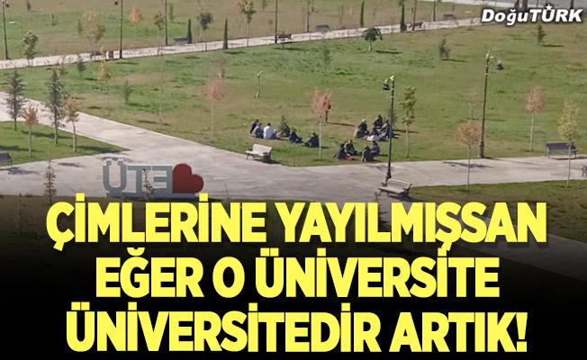 Çimlerine yayılmışsan eğer o Üniversite Üniversitedir artık!