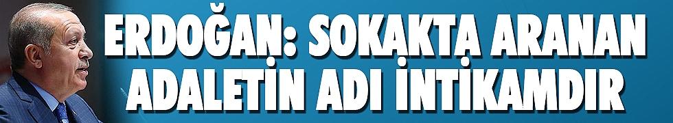 <b>Cumhurbaşkanı Erdoğan: Sokakta aranan adaletin adı intikamdır</b>