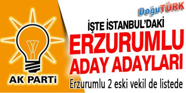 İŞTE İSTANBUL'DAKİ ERZURUMLU ADAY ADAYLARI