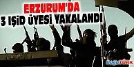 ERZURUM#039;DA 3 IŞİD ÜYESİ YAKALANDI