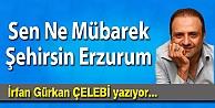 Sen Ne Mübarek Şehirsin Erzurum