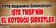 İŞTE TMSFNİN EL KOYDUĞU ŞİRKETLER