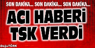 TSK ŞEHİT SAYISINI AÇIKLADI!