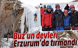 BUZ'UN DEVLERİ ERZURUM'DA