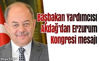 Başbakan Yardımcısı Akdağ'dan Erzurum Kongresi mesajı