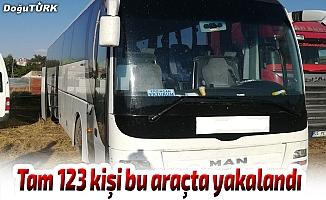 Erzurum'da 123 kaçak yakalandı
