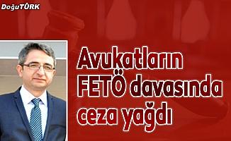Avukatların FETÖ davasında ceza yağdı