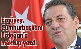 Ergüney, Cumhurbaşkanı Erdoğan'a mektup yazdı