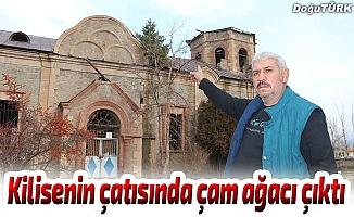 Kilisenin çatısında çam ağacı çıktı