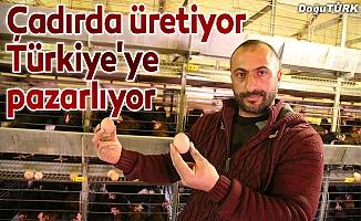 Çadırda ürettiği yumurtaları Türkiye'ye pazarlıyor