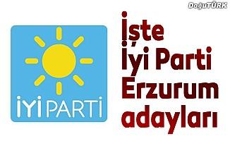 İyi Parti Erzurum adayları açıklandı