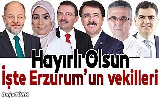 İşte Erzurum Milletvekilleri; kim kimdir?