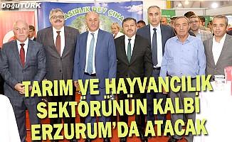 Azizoğlu: Erzurum tarım ve hayvancılık bölgesi