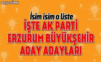 İşte AK Parti Erzurum Büyükşehir aday adayları