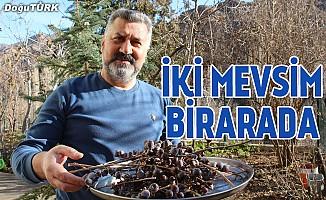 Erzurum'da kış, Olur'da bahar havası
