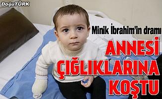 1,5 yaşındaki çocuk tedavi altına alındı