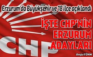 CHP Erzurum adaylarını açıkladı