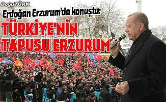 Erdoğan: Her fırsatta Dadaşlarla buluşmak bize güç veriyor
