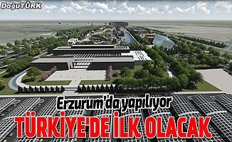 Türkiye'nin dinlenme amaçlı ilk biyolojik göleti yapılacak