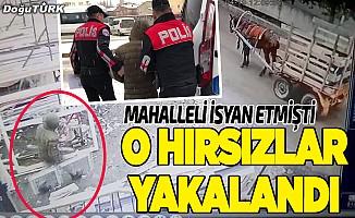 Kapı ve pencere hırsızları yakalandı
